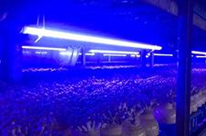 ユメックス中国深圳工場